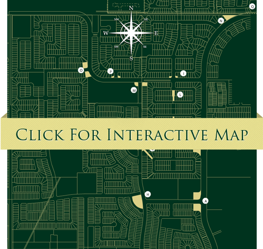 interactive-map-placeholder